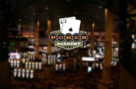 Обзор Poker Academy Pro